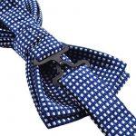 Alizeal Rétro Lot de Nœud Papillon & Mouchoir & Boutons de Manchette à Carreaux en Polyester Soie pour Homme de la marque Alizeal image 2 produit