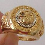 [BAOR54]Bague chevalière plaqué or jaune et blanc 18 K nickel et laiton superbe lion homme T 57 de la marque Toutpourtoi image 3 produit