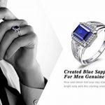 JewelryPalace 3ct Bijoux Luxe Classique Bague Homme Anneau Bleu en Argent Sterling 925 en Saphir de Synthèse pour Fiançailles Alliance Mariage Anniversaire de la marque Jewelrypalace image 5 produit